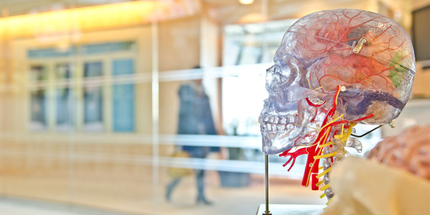 Νευροουρολογία